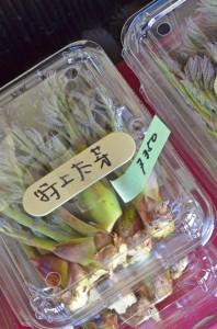 たらの芽は一パックづつ購入できます