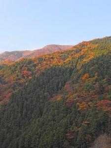 紅葉で刺繍やパッチワークみたいな山々