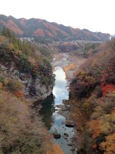 紅葉も半分くらい。葉の落ちた木が寒々しい。