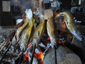 囲炉裏で焼いた魚
