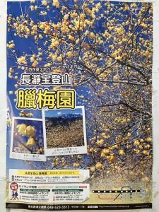 宝登山の蠟梅ポスター