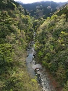 新緑の奥秩父渓谷