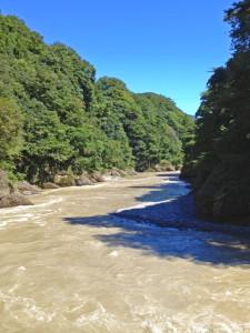 台風による荒川の増水