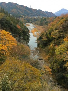 白川橋から下流の眺め(2017年)