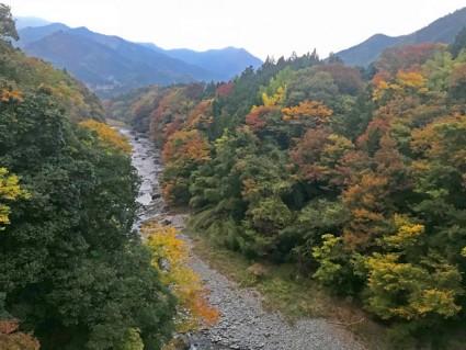 平和橋から大滝方面の紅葉