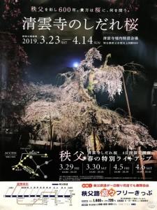 2019青雲寺のしだれ桜ポスター